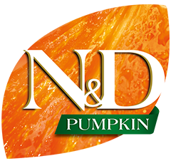 50_47_nd-pumpkin-logo