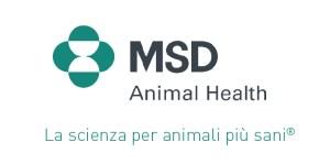 logo-msd-04-02-02-6