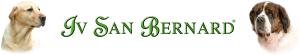 logo-ivsanbernard-canada